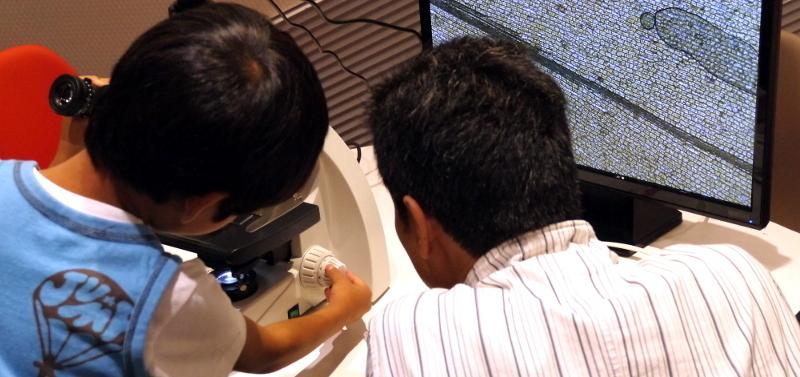 (申込受付終了)夏休み 親子で楽しむ顕微鏡ワークショップ(2018年8月23日 10:00~)