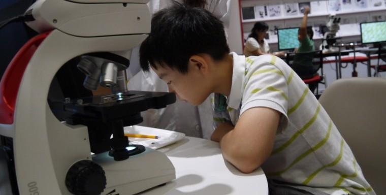 (申込受付終了)夏休み 親子で楽しむ顕微鏡ワークショップ(2017年8月9日、10日 10:00~/14:00~)