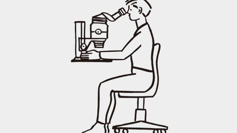 人に優しい蛍光実体顕微鏡ってなんだろう?いろんな種類があるって本当?