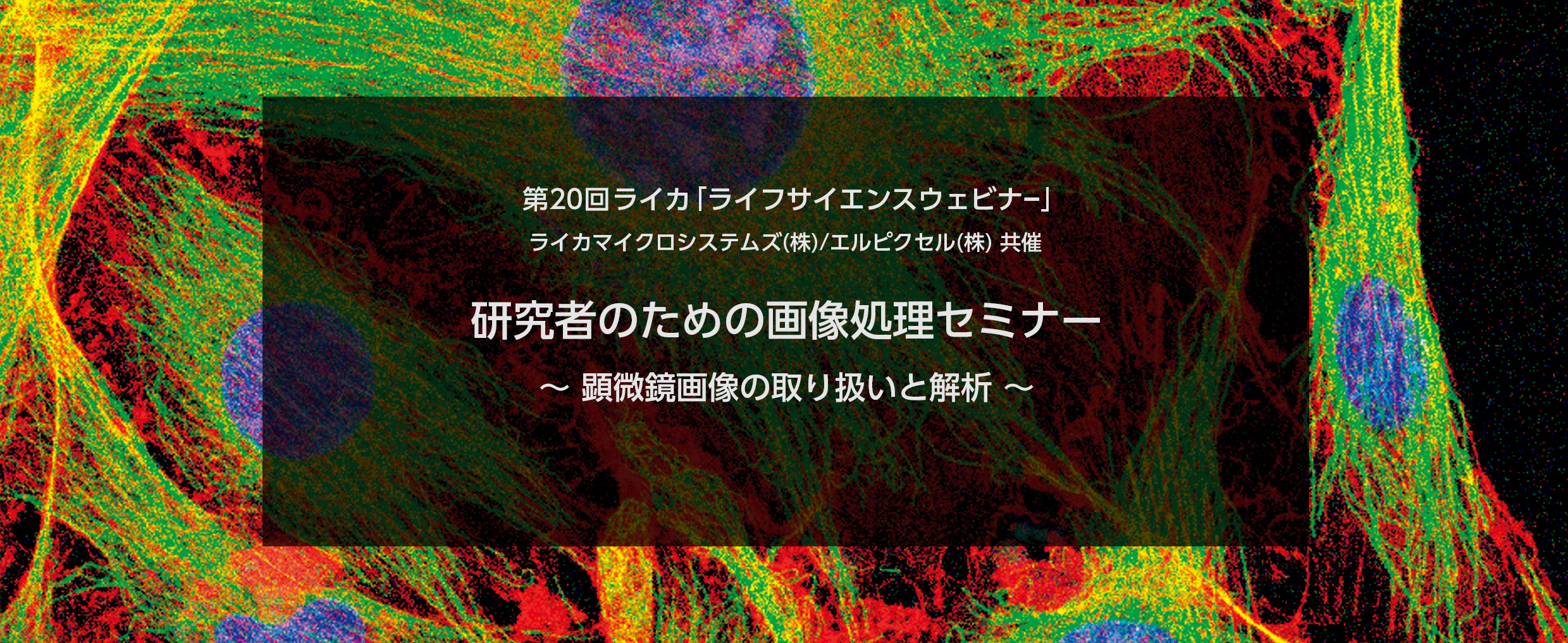 (申込受付終了)[ImageJ・IMACEL活用術] 研究者のための画像処理・解析セミナー ~顕微鏡画像の取扱いと解析~(2017年7月13日10:00~/12:00~)