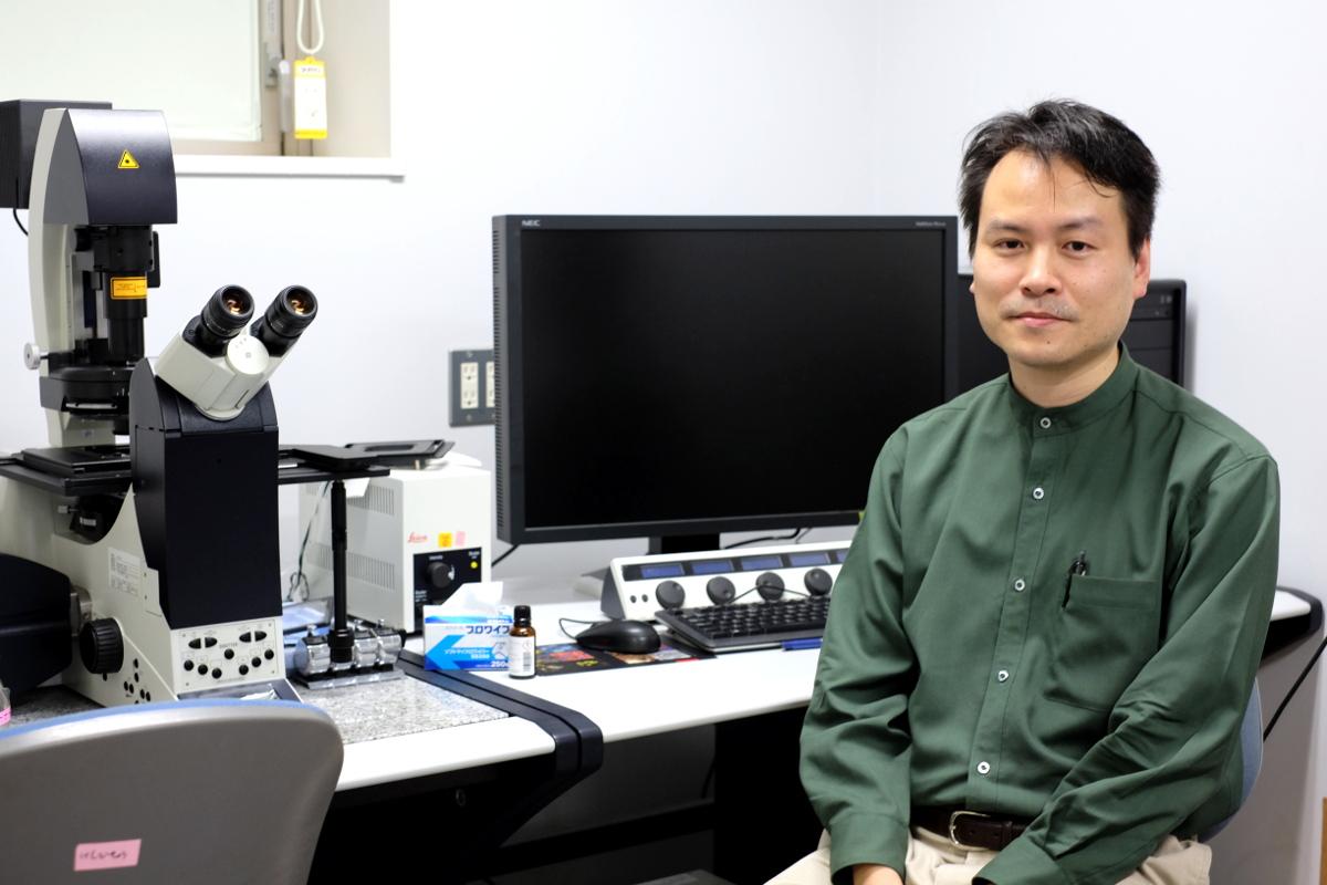 共焦点顕微鏡観察事例/細胞内の物質輸送メカニズムを解明する