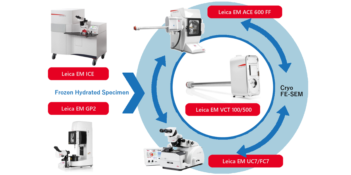 (申込受付終了)<同時開催> クライオSEM試料作製ワークショップ & ABiS 電子顕微鏡トレーニング – 第7回(平成30年度第1回)