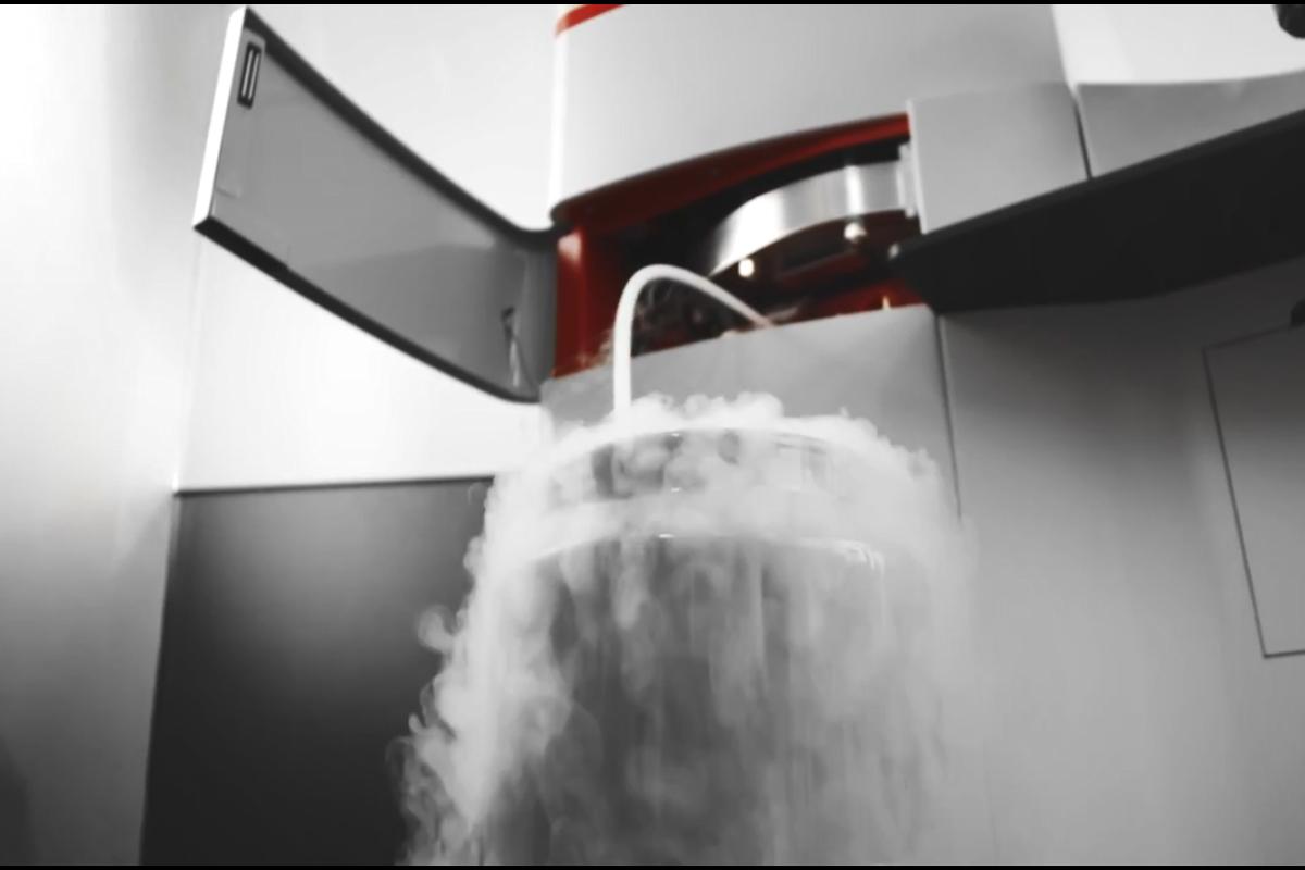 電子顕微鏡でダイナミックな生命現象をとらえる!高圧凍結でアプローチ