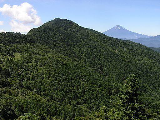 Koganesawayama fujisan