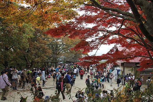 Takao san top 10.11.13 saturday