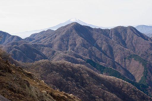 Mt.hinokiboramaru 17