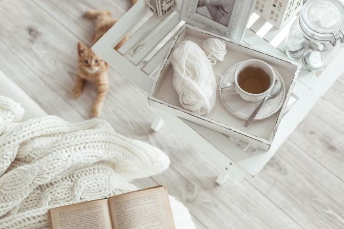 白い部屋とネコ