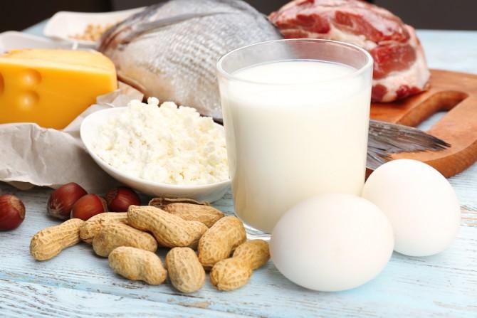 上手なタンパク質のとり方