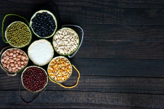 数種類のタンパク質がとれそうな豆