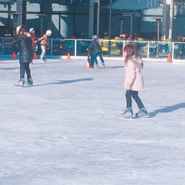 スケートを楽しむ群衆