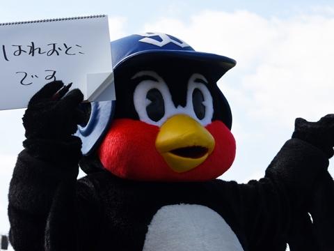 つば九郎が沖縄入り!