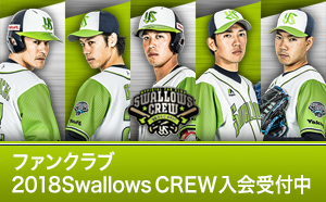 2018Swallows CREW