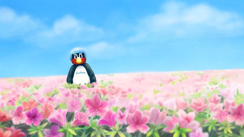 つば九郎のいる花畑