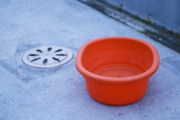 排水口と洗面器