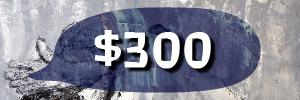 3981 banner