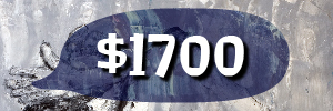 3989 banner