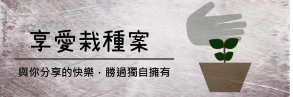 16257 banner