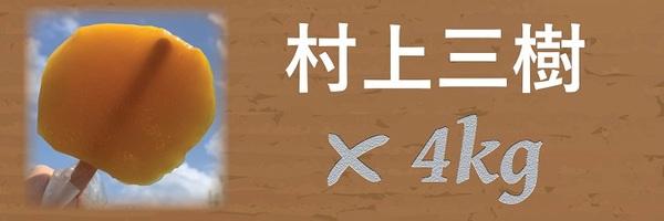 24479 banner