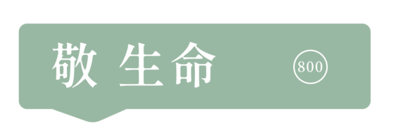 40101 banner