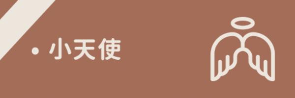 50456 banner