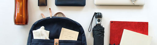 A perfect commuter bag that you can see from inside your bag