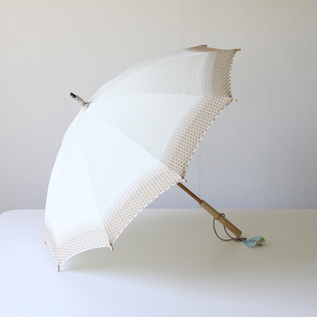 Parasol Enoki
