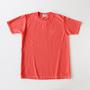 フルーツ染めTシャツ