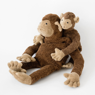 Healing pillow monkey